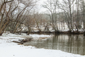 Enoree River during winter